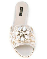 Dolce & Gabbana Кружевные Сандалии Bianca С Кристаллами - Многоцветный