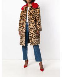 Dolce & Gabbana Contrast-collar Leopard-print Coat - Коричневый