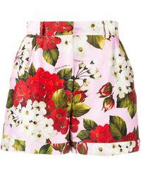 Dolce & Gabbana Shorts a fiori - Multicolore