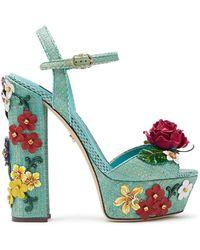 Dolce & Gabbana フローラル サンダル - ブルー