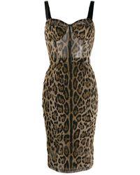Dolce & Gabbana - レオパード ドレス - Lyst