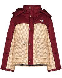Gucci GG Parachute Padded Colour-block Jacket - レッド
