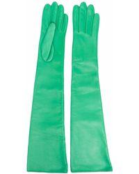 Manokhi Длинные Перчатки - Зеленый