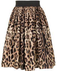 Dolce & Gabbana Rock mit Leoparden-Print - Braun