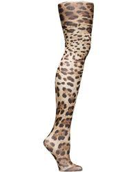 Dolce & Gabbana - Collants imprimés léopard - Lyst