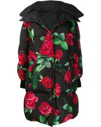 Dolce & Gabbana Rose-print Padded Coat - Black