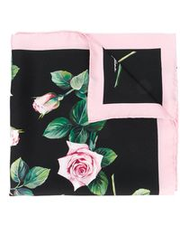 Dolce & Gabbana Tropical Rose Print Scarf - Multicolour