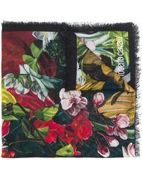 Roberto Cavalli - Paradise Found スカーフ - Lyst