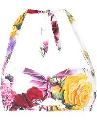 Dolce & Gabbana - ローズプリント ビキニトップ - Lyst