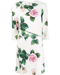 Dolce & Gabbana Shiftjurk Met Roosprint - Wit