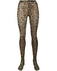 Dolce & Gabbana Leopard Tights - Green
