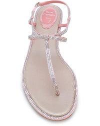 Rene Caovilla Embellished Sling-back Sandals - Pink