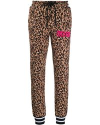 Versace Jeans Couture レオパード トラックパンツ - ブラウン