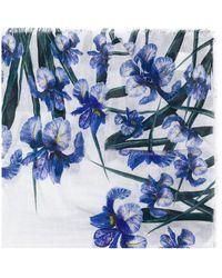 Faliero Sarti Floral-print Scarf - Blue