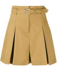 Alberta Ferretti Box-pleated Shorts - Multicolor