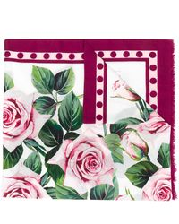 Dolce & Gabbana Tropical Rose Print Scarf - Pink
