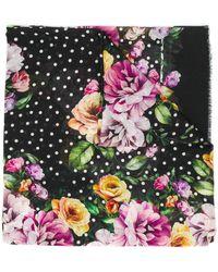 Dolce & Gabbana フローラル スカーフ - マルチカラー