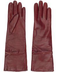 P.A.R.O.S.H. Длинные Перчатки - Красный