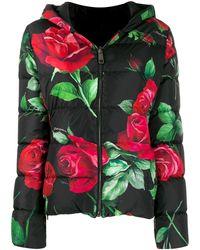 Dolce & Gabbana Куртка-пуховик С Принтом - Многоцветный
