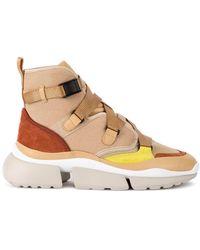 Chloé Low Top Sneakers - Bruin