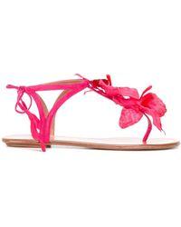 Aquazzura フラワー装飾 ストラップサンダル - ピンク