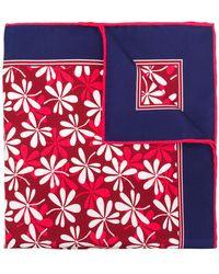 Kiton - Floral Print Scarf - Lyst