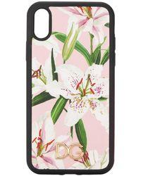Dolce & Gabbana Lily Print Iphone Xr Case - Roze