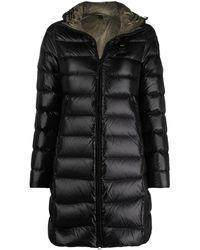 Blauer Hooded Puffer Jacket - Black