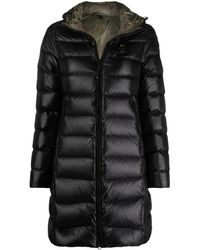 Blauer フーデッド パデッドジャケット - ブラック