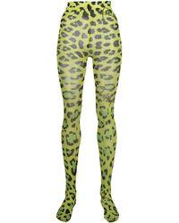 Philipp Plein Collants à imprimé léopard - Vert