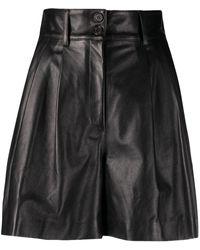 Dolce & Gabbana Шорты С Завышенной Талией - Черный