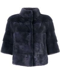 Cara Mila Paneled Coat - Blue