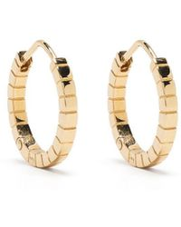 Ivi Signore Medium Hoop Earrings - Metallic