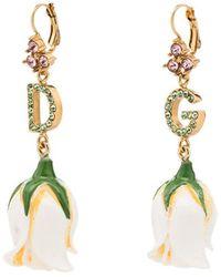 Dolce & Gabbana ローズモチーフ ピアス - マルチカラー