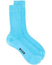 MSGM Носки С Логотипом - Синий