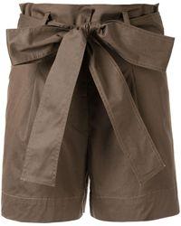 Silvia Tcherassi 'Orchard' Shorts - Grün