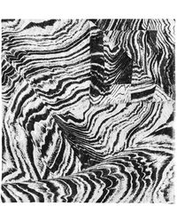 Barbara Bui - Zebra Print Scarf - Lyst