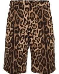 Dolce & Gabbana レオパード バミューダショーツ - ブラウン