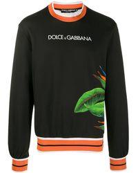 Dolce & Gabbana Tropical Print Sweater - Black
