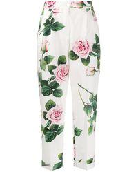 Dolce & Gabbana Pantalon Met Roosprint - Wit