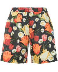 Mother Of Pearl Shorts tipo bermuda con estampado de tulipán - Negro