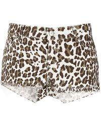 P.A.R.O.S.H. Shorts con animal print - Marrón
