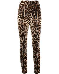 Dolce & Gabbana Укороченные Брюки С Леопардовым Принтом - Многоцветный