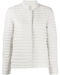 Save The Duck Giga Padded Jacket - Grey