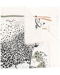 Liu Jo レオパード スカーフ - ホワイト