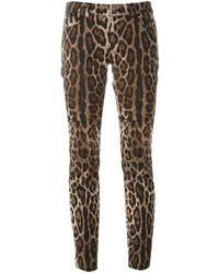 Dolce & Gabbana Брюки С Леопардовым Принтом - Коричневый