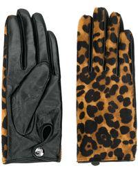 Karl Lagerfeld Перчатки С Леопардовым Принтом - Многоцветный