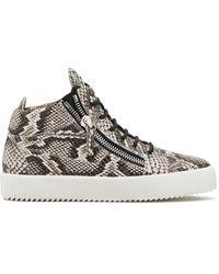 Giuseppe Zanotti Kriss Python-effect Sneakers - Brown