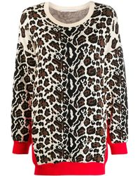 Stella McCartney Leopard Print Jumper - Multicolour