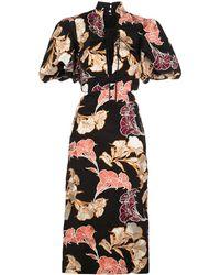 Johanna Ortiz Abound In Beauty Midi Dress - Black